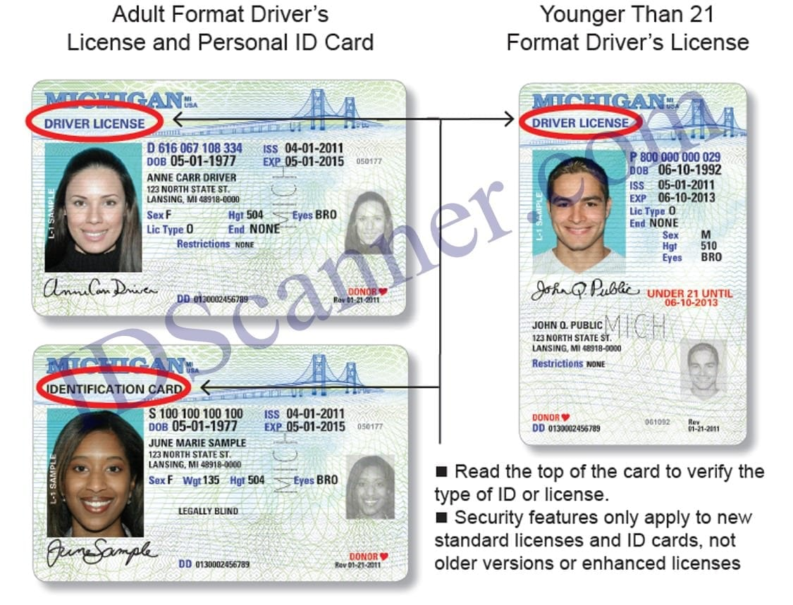 most expensive state drivers license