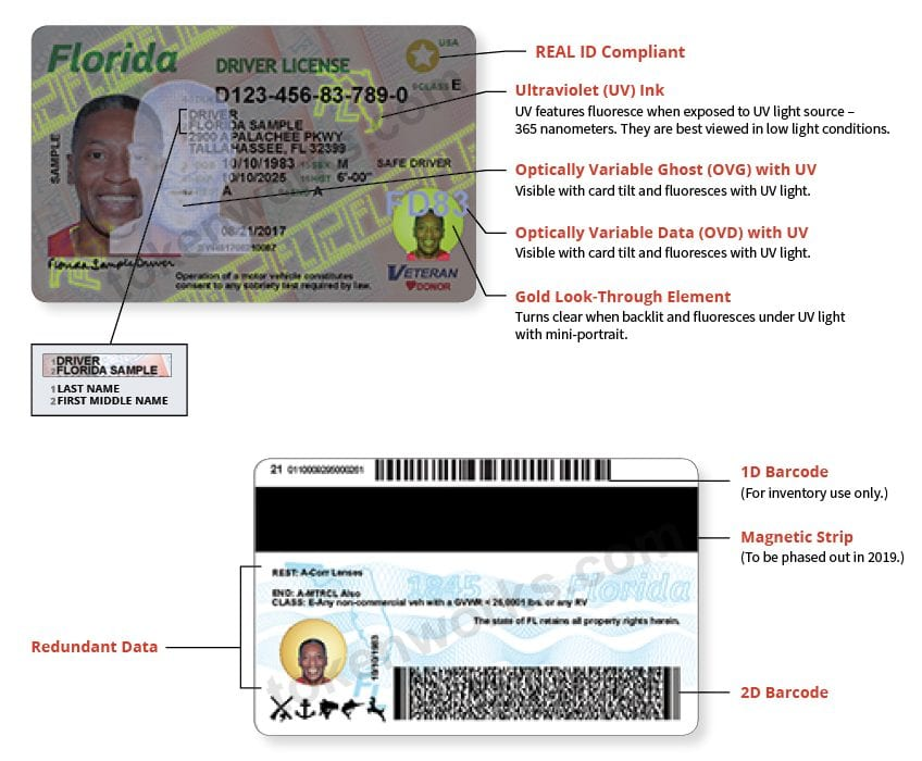 Florida Driver's License Fraud Protection Features