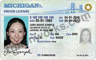 REAL ID-compliant Michigan Driver's License