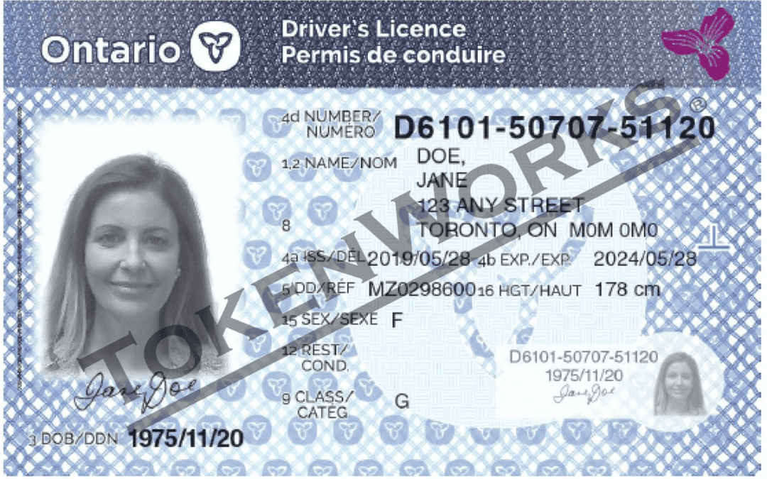 Ontario Redesigns Driver's License Cards to Prevent Fraud & Identity Theft